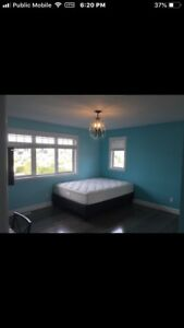 Room for rent (new home)