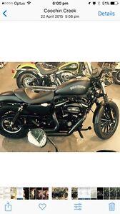 883 iron Harley Davidson Buderim Maroochydore Area Preview
