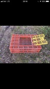 Looking for 2 chicken crates of any kind