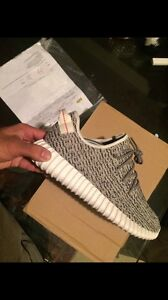 Yeezy boost 350 turtle dove size 9