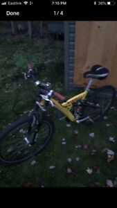 Minelli mountain bike 60$ OBO