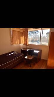 single room rent[from now on to whenever you like]