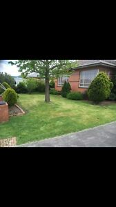 ANDY LAWN MOWING AND GARDENING SERVICE Preston Darebin Area Preview