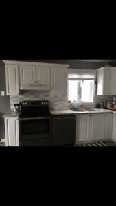 Kitchen cabinets, countertop, sink and lights