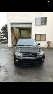 2009 Ford Escape Limited Ed
