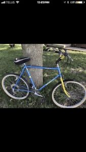 Norco Mountaineer SL Hybrid Bike