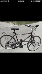 Great Commuter Bicycle