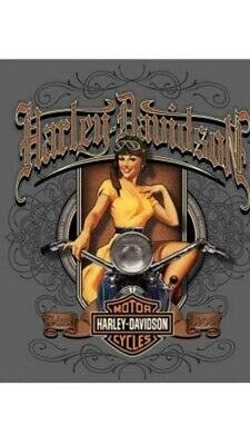 "TIN SIGN ""Harley Davidson Babe"" Motorcycle Garage Cycle Rustic Decor Hog Mancave"