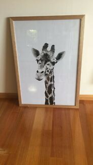 Giraffe Print with Tas Oak frame