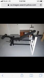 Northern Lights Olympic Bench with Bar & 270lbs