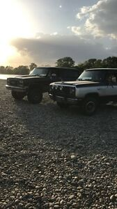 ISO: 1981-93 ramcharger hatch/tailgate
