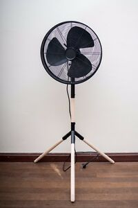 Good condition electric fan Artarmon Willoughby Area Preview
