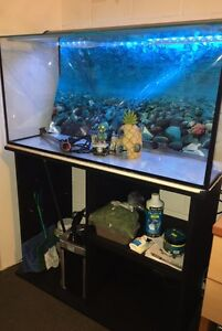 3Ft Fish Tank + Stand, Filter, Thermometer, Accessories  and More! Mermaid Waters Gold Coast City Preview