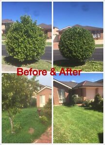 Affordable & Trusted Garden Maintenance, lawn mowing Beaumont Hills The Hills District Preview