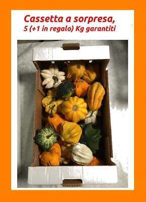 Zucche ornamentali decorative di Halloween zucca per arredamento pumpkins 1cas3