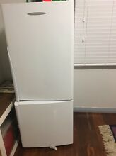 Fisher & Paykel Fridge Spencer Park Albany Area Preview