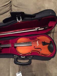 Violin Kenwick Gosnells Area Preview