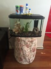 Fish tank that comes with everything! Scarborough Stirling Area Preview