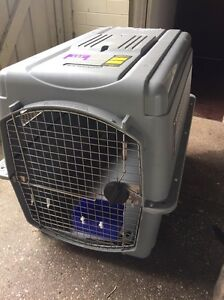 Airline approved large pet container Miandetta Devonport Area Preview