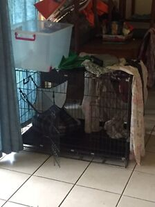 Crate/cage Deception Bay Caboolture Area Preview