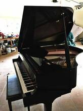 2009 ESSEX BY STEINWAY & SONS , GRAND PIANO 155 Cooktown Cook Area Preview