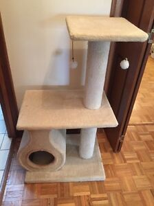Cat scratcher scratching post toy bed Pasadena Mitcham Area Preview