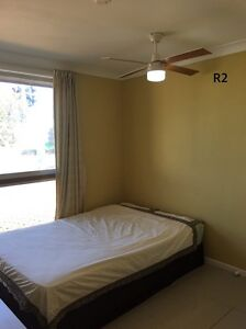 Nice n clean single room for rent close Garden City Upper Mount Gravatt Brisbane South East Preview