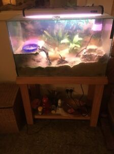 Hermit crab tank/ Turtle tank Christies Beach Morphett Vale Area Preview