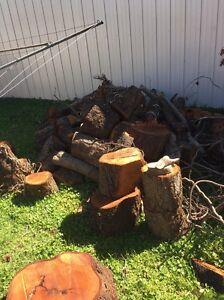 Firewood Tenambit Maitland Area Preview