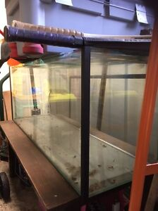 Extra Large Fish Tank Clifton Springs Outer Geelong Preview