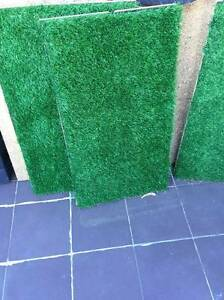 Fake Grass Panels Waterloo Inner Sydney Preview