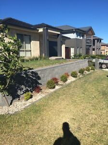 Landscaper Handyman services Macquarie Hills Lake Macquarie Area Preview