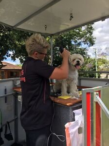 Mel's Dog Washing Bray Park Pine Rivers Area Preview