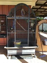 Large Bird Cage Alexandra Hills Redland Area Preview
