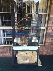Large bird cage Queanbeyan Queanbeyan Area Preview