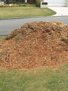 High quality mulch. Free Floreat Cambridge Area Preview