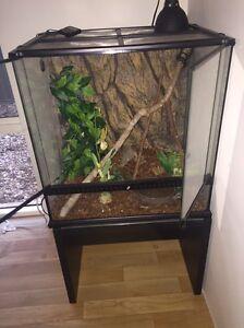 Reptile tank Ellenbrook Swan Area Preview