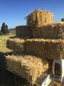Oaten hay bales Mypolonga Murray Bridge Area Preview