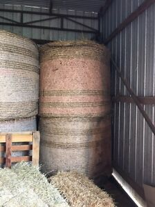 Round hay bales Riddells Creek Macedon Ranges Preview
