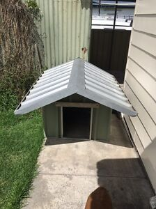 Large dog kennel Maitland Maitland Area Preview