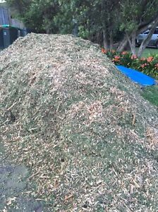 Free mulch- take as much as you like! Cherrybrook Hornsby Area Preview
