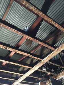 Removing iron roof sheeting - free Marrickville Marrickville Area Preview