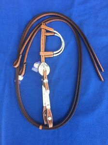 Show bridle Mutdapilly Ipswich City Preview