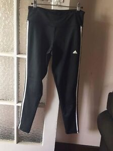Women's adidas gym tights Shorncliffe Brisbane North East Preview