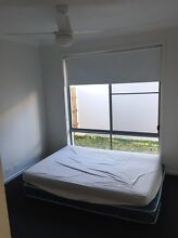 Room for rent Mountain Creek Maroochydore Area Preview