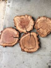 Timber slices Kings Park Blacktown Area Preview