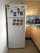Fisher and Paykel fridge (urgent) Croydon Park Canterbury Area Preview