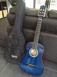 Guitar - Ashton Waterford Logan Area Preview