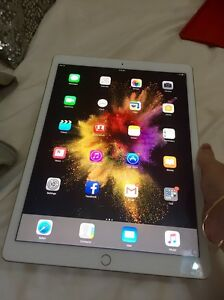 Gold iPad Pro 2 12.9inch Manly Manly Area Preview