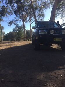 NISSAN PATROL 2005 Springwood Blue Mountains Preview